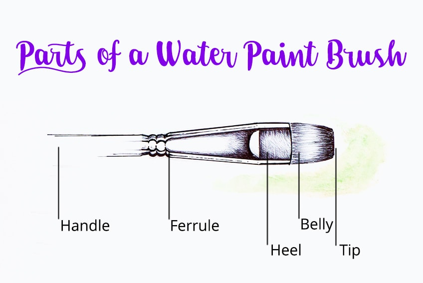 parts of a watercolor paintbrush